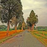 """Road Scene Fake HDR 8X10"" by brianyoung81"