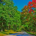 """Skyline Drive Road Scene Vibrant Colors Fake 8X10"" by brianyoung81"