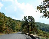 Skyline Drive Road Scene 8X10 Normal Colors