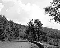 Skyline Drive Road Scene Black and White 8X10