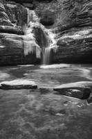 Cedar Falls Winter Black and White