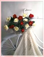 bike with roses
