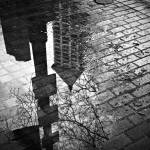 """Smith Tower Reflection"" by alechuxley"