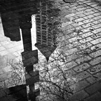 Smith Tower Reflection Art Prints & Posters by Alec Huxley