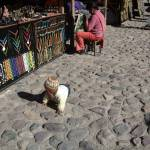 """Peru Market"" by michellemorrisphotography"