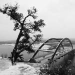 """Austin 360 Bridge & Tree with snow"" by treyerice"