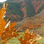 """Hogback in the Fall"" by michellejensen"