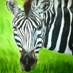 """Zebra in the Wild"" by Barbosa"