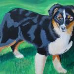 """""""Miniature Australian Shepherd"""" by Lodell"""