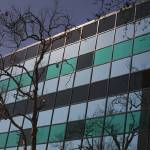 """Modern Architecture Glass Window Facade with Tree"" by atonalarts"