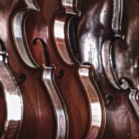 """Violins in Music Store Repair Shop Dayton"" by Jim Crotty"