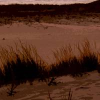 """Sunset in the Dunes"" by Michelle Calkins"