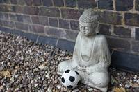 Buddha and the Contemplation of a Football