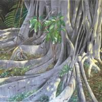Banyan Art Prints & Posters by Michael Roush
