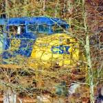 """CSX 438 treed"" by Pauljs"