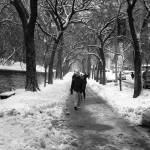 """.park.pedestrians."" by kacnyc"