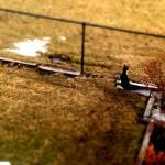 """Anthony In the Yard"" by jasonmezera"