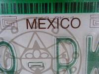 MEXICO License Plate