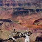 """""""colorado river"""" by kaberlin59"""