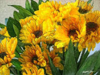 Yellow Chrysanthemums 4
