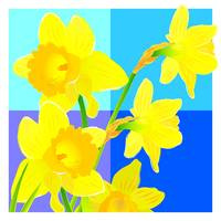 Daffodils against blue cubes