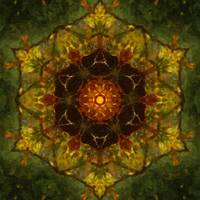 Autumn Delight Kaleidoscope Art 5