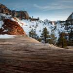 """Checkerboard Mesa, Zion National Park"" by dawilson"
