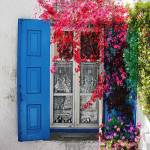 """Blue Shutters"" by Joselyn_Holcombe"