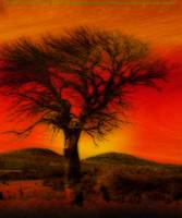 Oil Pastel Tree in Sunset