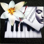 """""""Piano Concert"""" by Aneri"""