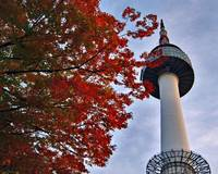 Korea - Autumn in Seoul