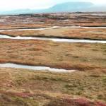 """""""Iceland"""" by alenas"""