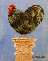 Orpington Rooster, Successful Orator