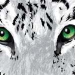 """Snow Tiger"