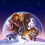 """Animal Magic 2"" by jerrylofaro59"