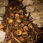 """Paris Catacombs: Cimetiere Montrouge Skulls #2"" by undercity"