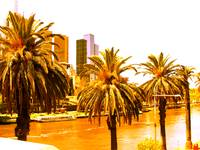 Palm trees and Yarra River Abstracted