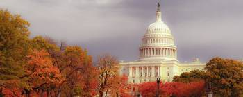 The Capitol in Fall Foliage