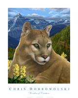 Wonders of Creation - Mountain Lion Series I