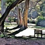 """""""Trees and Bench"""" by pluppy"""