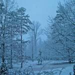 """WinterLandscape"" by teenolan"