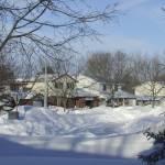"""Real Life Christmas Card, Guelph, Ontario"" by MikeTheBigBear"