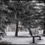 """Bench In Winter"" by JAS_Photo"