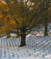 Snowy Sunset, Arlington National Cemetery