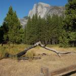 """Half Dome"" by apilk"