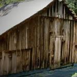 """""""Barn II"""" by patty_colmer"""