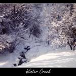 """Winter Creek"" by saddogshirts"