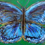"""Butterfly of Blueness"" by HeidiZeile"