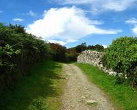 Irish Carriage Path