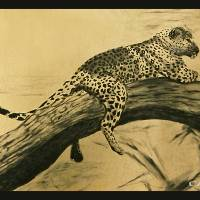"""TREE LEOPARD"" by William Cain"